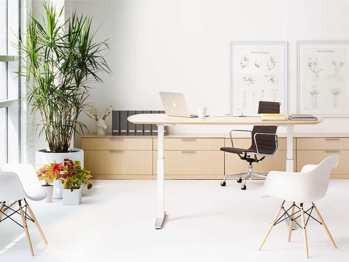 Herman Miller Renew desk - simple sit stand desk